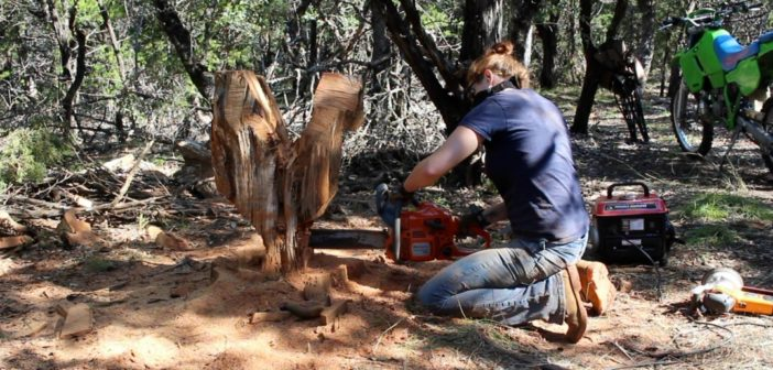 Chainsaw Carving a Chicken