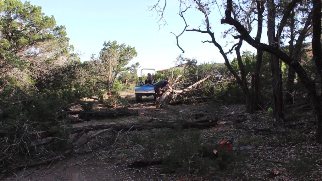 Clearing an Easement